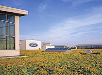 At 10.4-acres, the roof atop the Ford Dearborn Truck Assembly Plant in Michigan is the world's largest green roof.